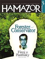 Hamazor 2010 3