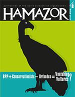 Hamazor 2012 4